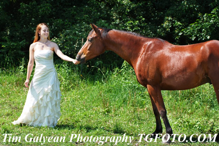 Horse animal senior pictures,Olathe South senior pictures senior portraits indoor outdoor locations head shots color cheer dance